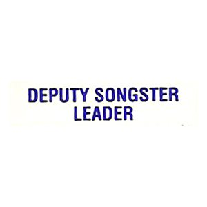 Local Officer Pin: Deputy Songster Leader