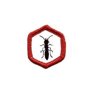 Ac / E Badge Insect World