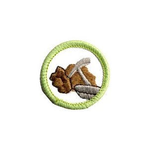 Gg Merit Badge The Earth Below
